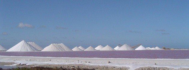 Salt Poduction
