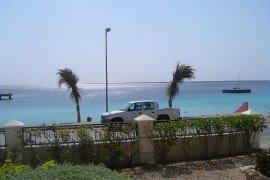 The Shores-DSC-03925