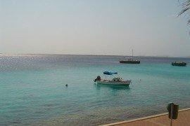 The Shores-DSC-03932