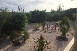 sabadeco shores 7
